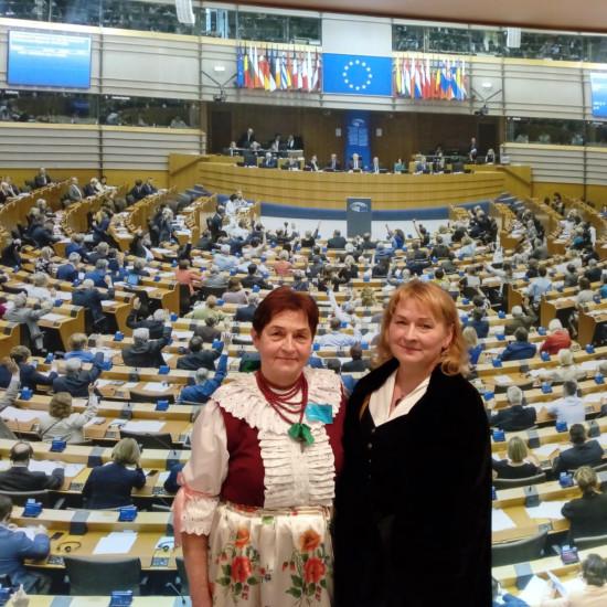 Godło Miasteczka Śląskiego w Parlamencie Europejskim